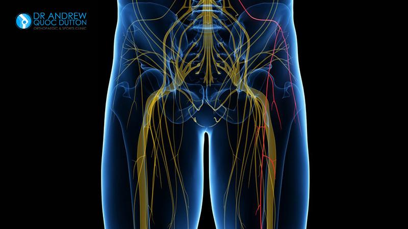 Dr Dutton Hip Bone Pain Meralgia Paresthetica
