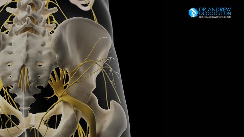 Dr Dutton Hip Bone Pain Sacralplexus