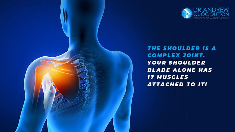 Dr Andrew Dutton Blog Orthopaedic Specialties Shoulder